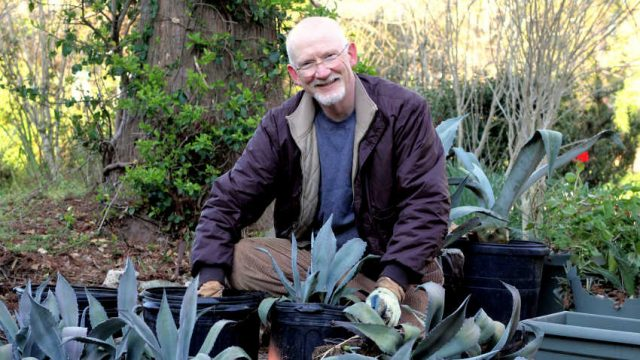 Glass Art to Garden Bounty: Andy Young